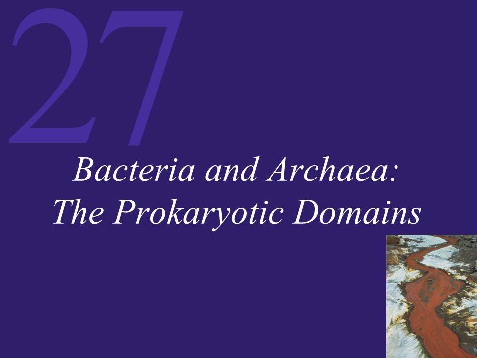 27 Bacteria and Archaea: The Prokaryotic Domains