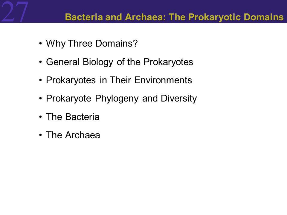 27 Why Three Domains? General Biology of the Prokaryotes Prokaryotes in Their Environments Prokaryote Phylogeny and Diversity The Bacteria The Archaea