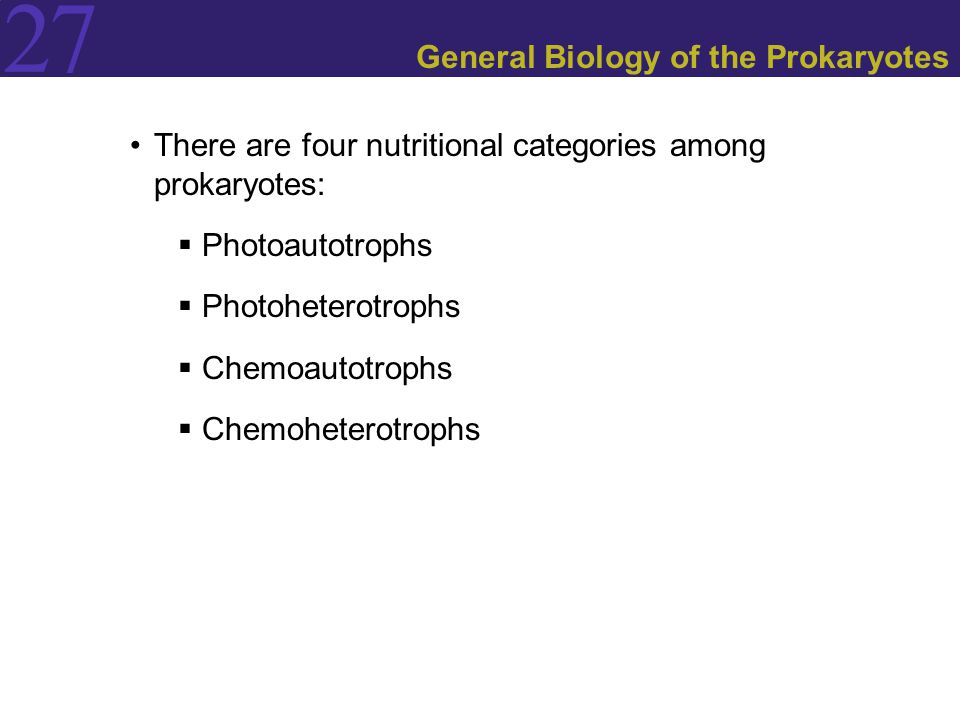 27 General Biology of the Prokaryotes There are four nutritional categories among prokaryotes:  Photoautotrophs  Photoheterotrophs  Chemoautotrophs