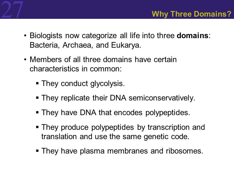 27 Why Three Domains? Biologists now categorize all life into three domains: Bacteria, Archaea, and Eukarya. Members of all three domains have certain