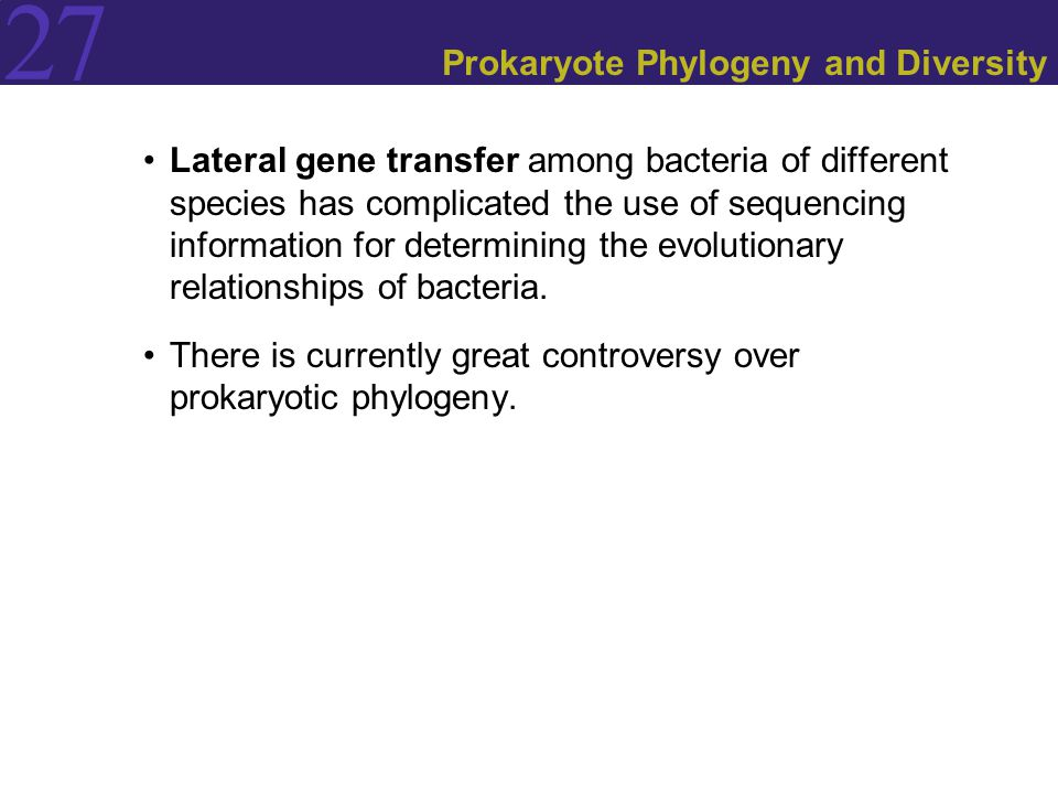 27 Prokaryote Phylogeny and Diversity Lateral gene transfer among bacteria of different species has complicated the use of sequencing information for