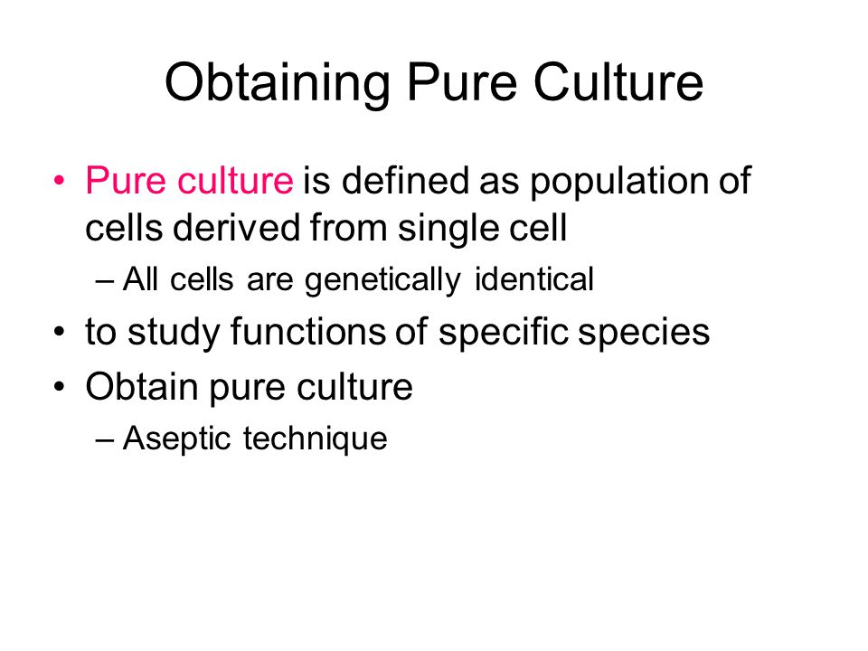 Obtaining Pure Culture Pure culture is defined as population of cells derived from single cell –All cells are genetically identical to study functions
