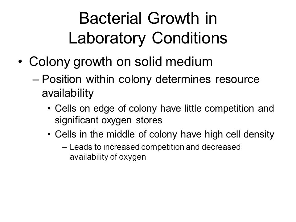 Colony growth on solid medium –Position within colony determines resource availability Cells on edge of colony have little competition and significant