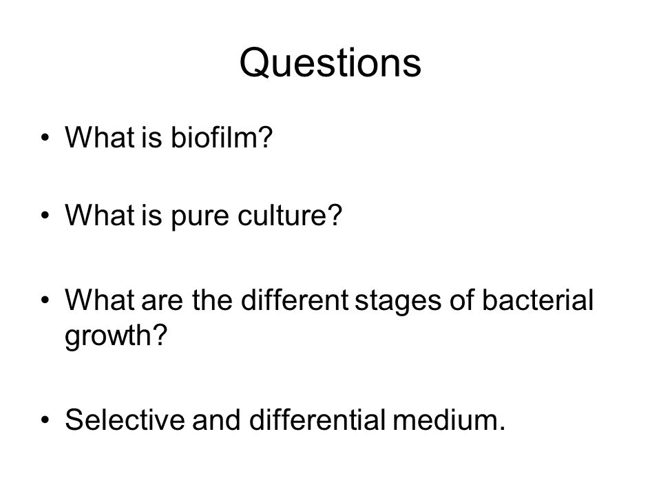 Questions What is biofilm? What is pure culture? What are the different stages of bacterial growth? Selective and differential medium.