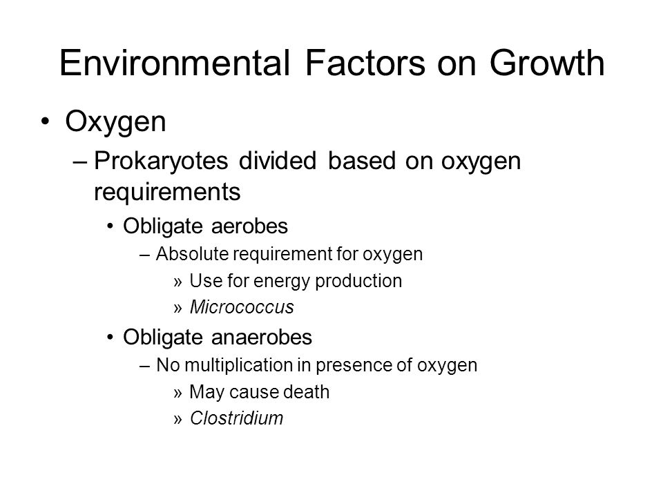 Oxygen –Prokaryotes divided based on oxygen requirements Obligate aerobes –Absolute requirement for oxygen »Use for energy production »Micrococcus Obl