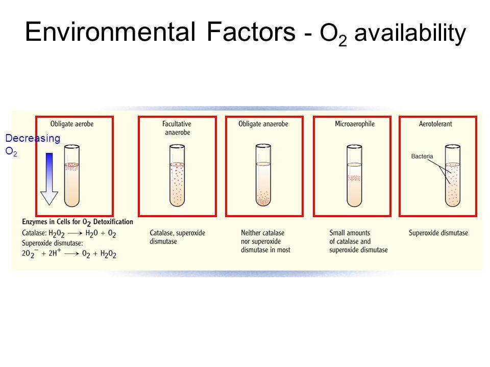 Environmental Factors - O 2 availability Decreasing O 2