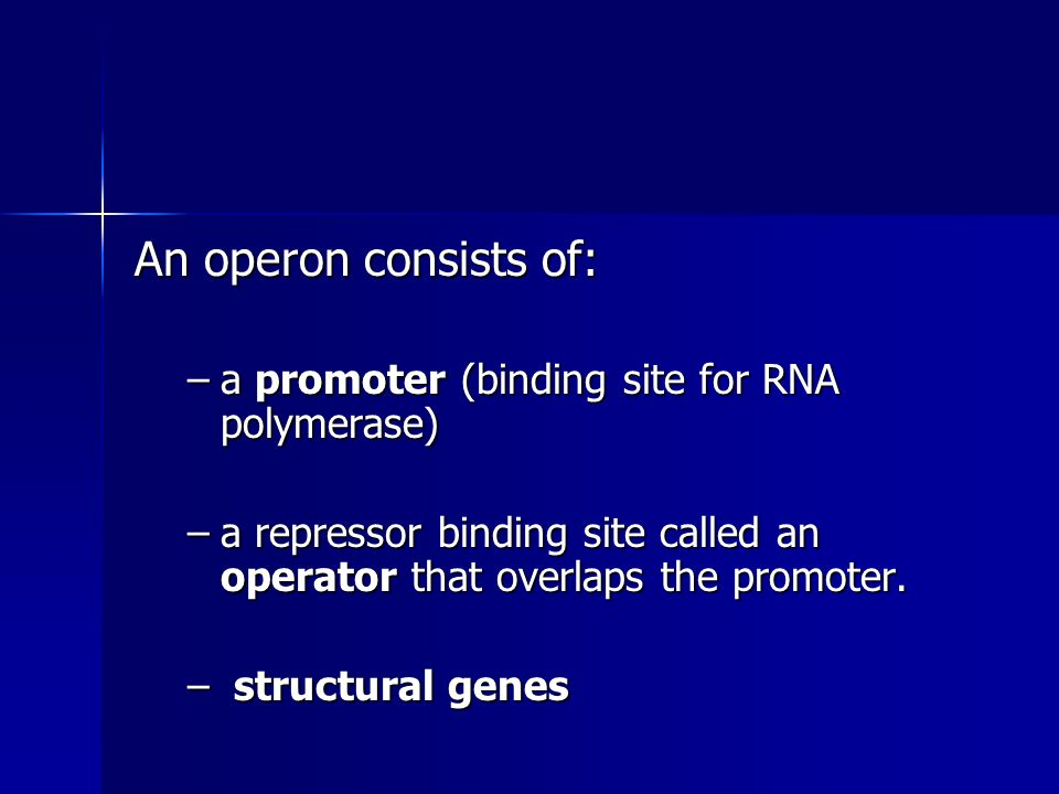 An operon consists of: –a promoter (binding site for RNA polymerase) –a repressor binding site called an operator that overlaps the promoter. – struct
