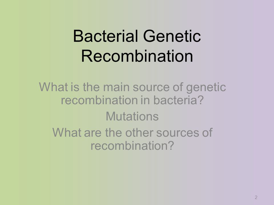 2 Bacterial Genetic Recombination What is the main source of genetic recombination in bacteria.