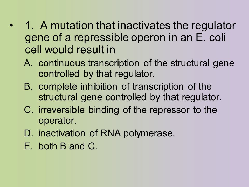 1. A mutation that inactivates the regulator gene of a repressible operon in an E.