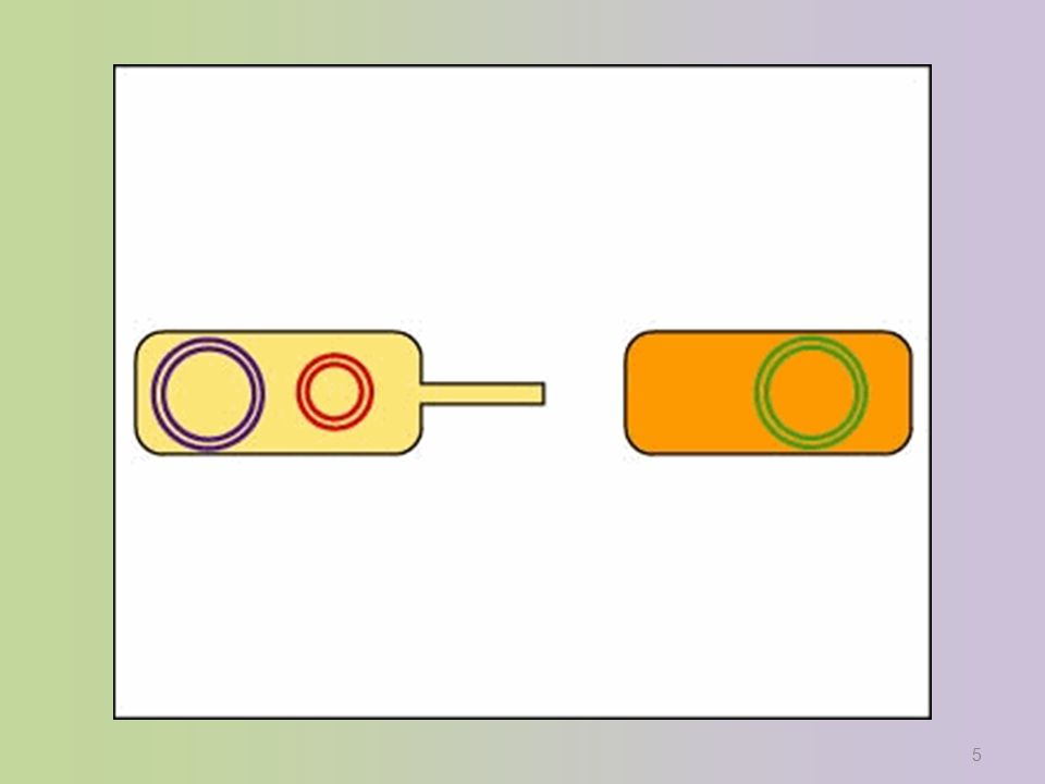 Jacob & Monod: lac Operon Francois Jacob & Jacques Monod –first to describe operon system –coined the phrase operon 1961 | 1965 Francois Jacob Jacques Monod