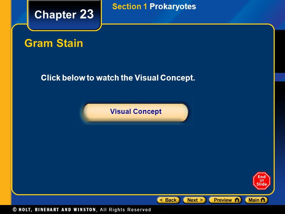 Chapter 23 Click below to watch the Visual Concept. Visual Concept Gram Stain Section 1 Prokaryotes