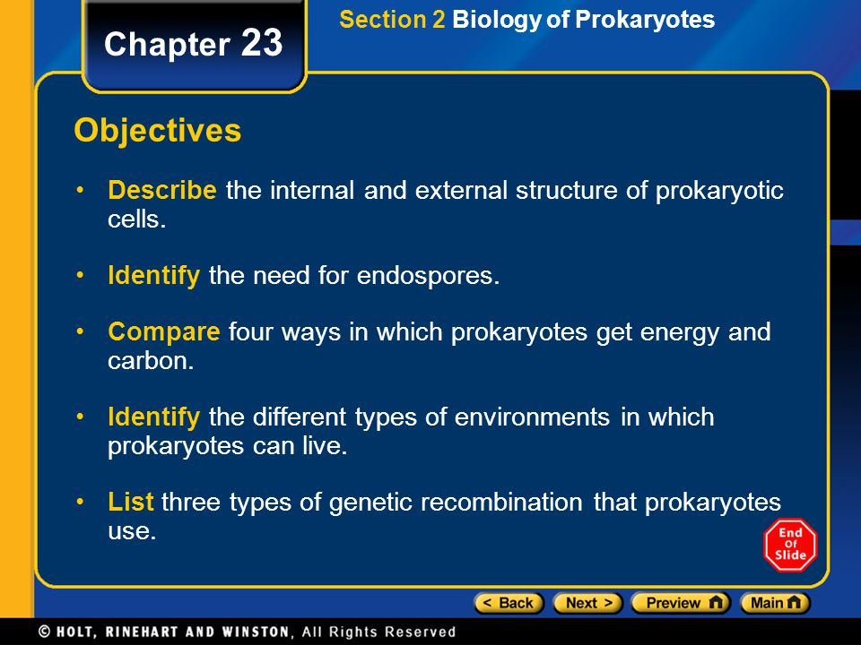 Section 2 Biology of Prokaryotes Chapter 23 Objectives Describe the internal and external structure of prokaryotic cells. Identify the need for endosp
