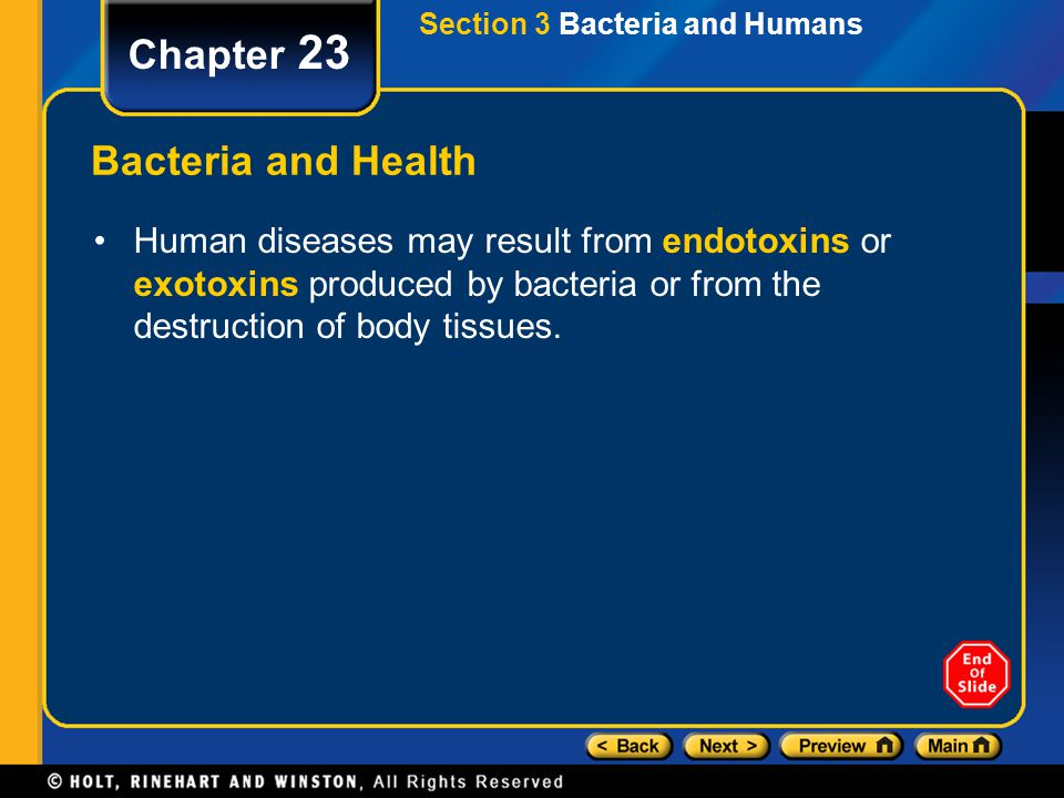 Section 3 Bacteria and Humans Chapter 23 Bacteria and Health Human diseases may result from endotoxins or exotoxins produced by bacteria or from the d