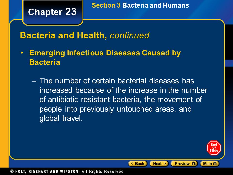 Section 3 Bacteria and Humans Chapter 23 Bacteria and Health, continued Emerging Infectious Diseases Caused by Bacteria –The number of certain bacteri