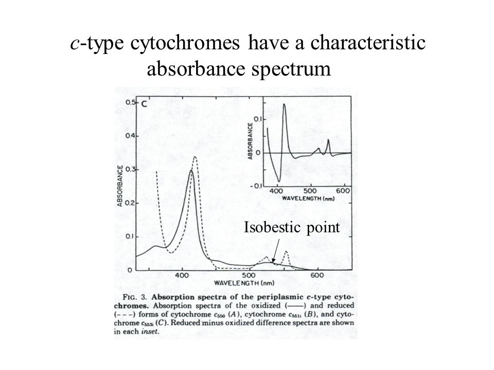 c-type cytochromes have a characteristic absorbance spectrum Isobestic point