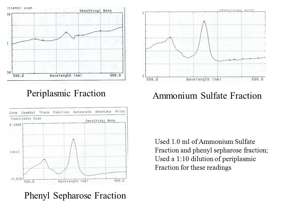 Periplasmic Fraction Ammonium Sulfate Fraction Phenyl Sepharose Fraction Used 1.0 ml of Ammonium Sulfate Fraction and phenyl sepharose fraction; Used a 1:10 dilution of periplasmic Fraction for these readings