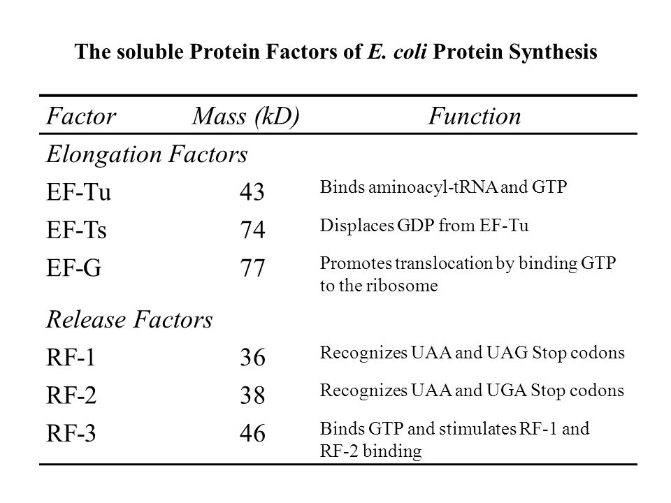 The soluble Protein Factors of E.