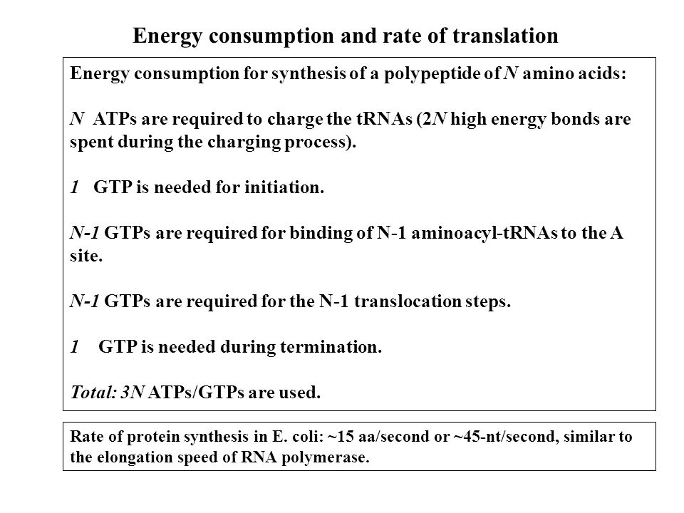 Energy consumption for synthesis of a polypeptide of N amino acids: N ATPs are required to charge the tRNAs (2N high energy bonds are spent during the charging process).