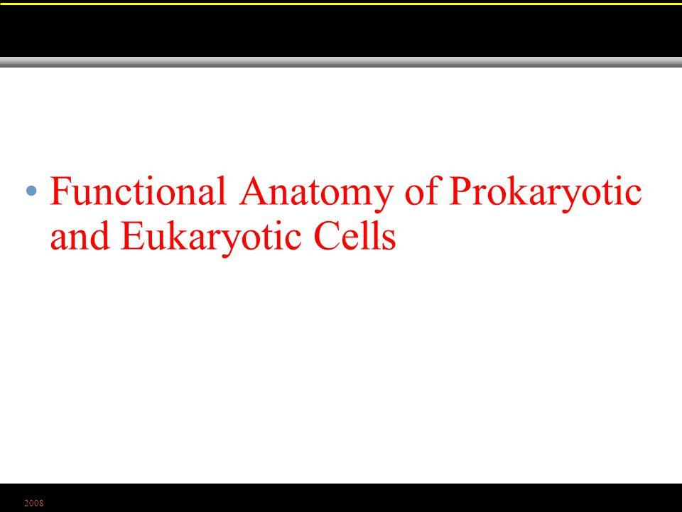 2008 Functional Anatomy of Prokaryotic and Eukaryotic Cells
