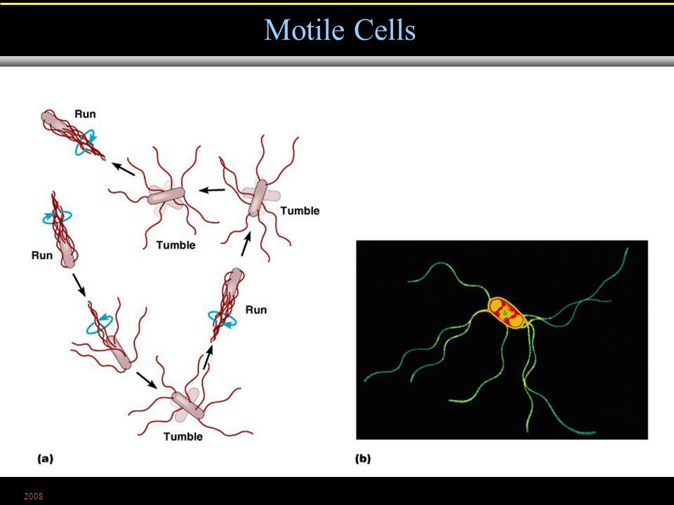 2008 Motile Cells Figure 4.9