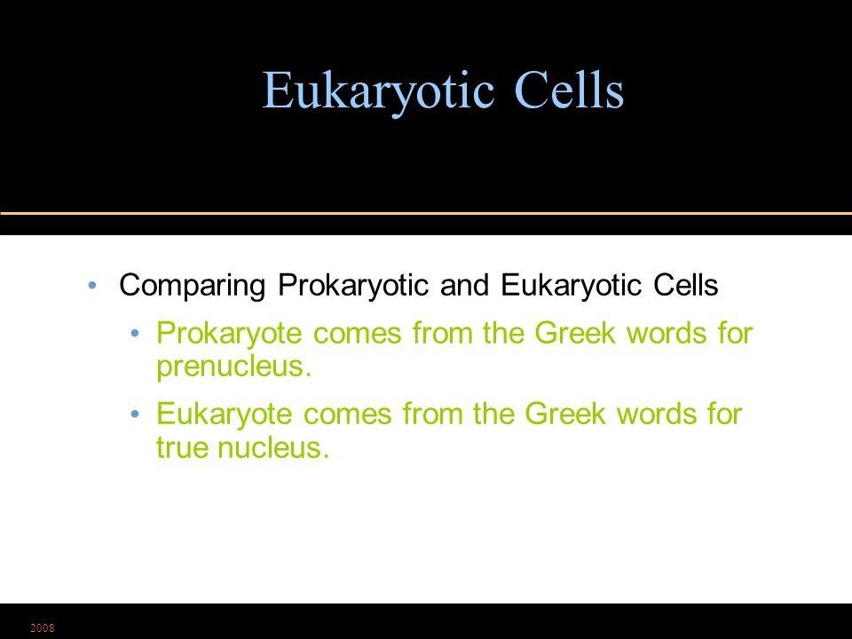 2008 Eukaryotic Cells Comparing Prokaryotic and Eukaryotic Cells Prokaryote comes from the Greek words for prenucleus. Eukaryote comes from the Greek