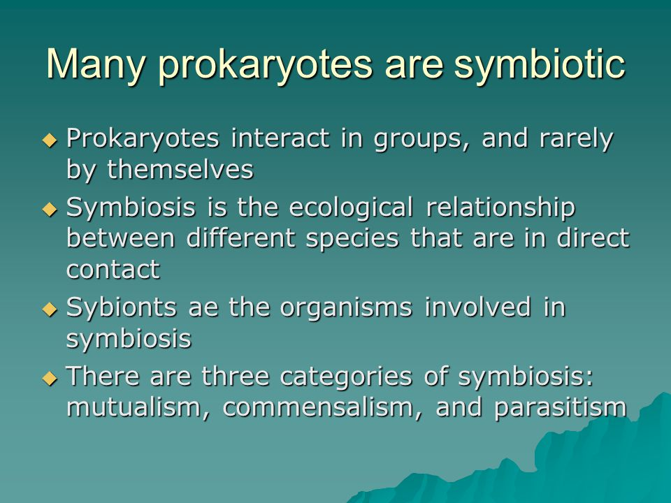 Many prokaryotes are symbiotic  Prokaryotes interact in groups, and rarely by themselves  Symbiosis is the ecological relationship between different species that are in direct contact  Sybionts ae the organisms involved in symbiosis  There are three categories of symbiosis: mutualism, commensalism, and parasitism