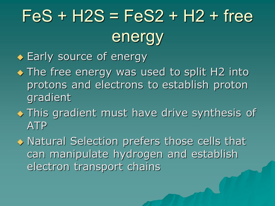 FeS + H2S = FeS2 + H2 + free energy  Early source of energy  The free energy was used to split H2 into protons and electrons to establish proton gradient  This gradient must have drive synthesis of ATP  Natural Selection prefers those cells that can manipulate hydrogen and establish electron transport chains