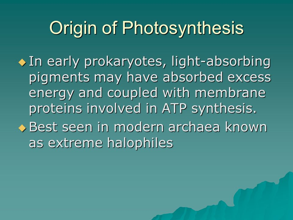 Origin of Photosynthesis  In early prokaryotes, light-absorbing pigments may have absorbed excess energy and coupled with membrane proteins involved in ATP synthesis.