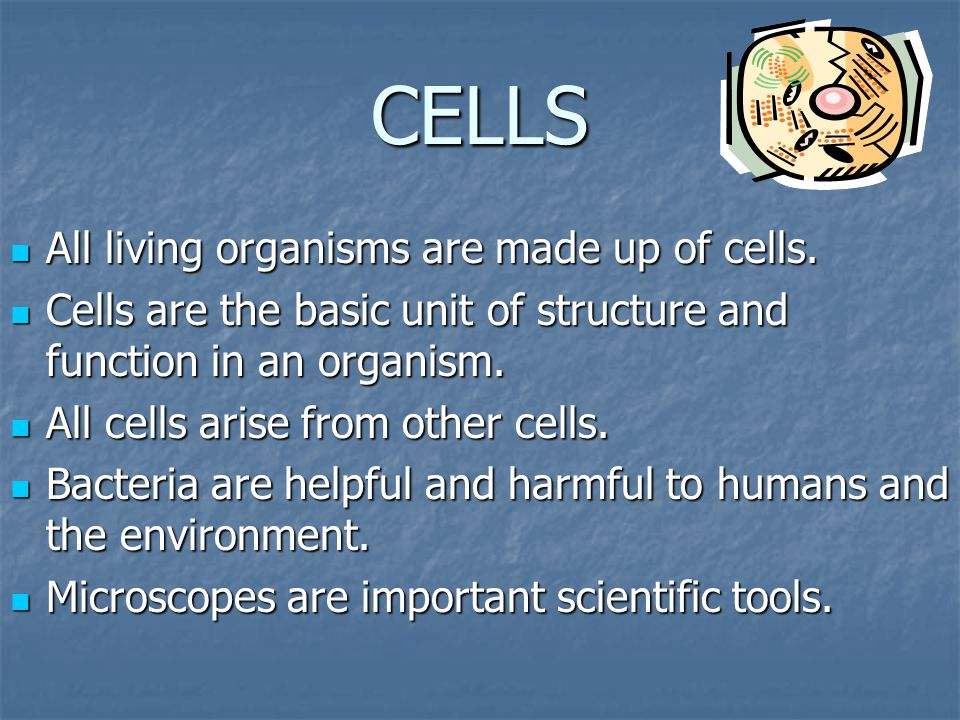 CELLS All living organisms are made up of cells. All living organisms are made up of cells. Cells are the basic unit of structure and function in an o