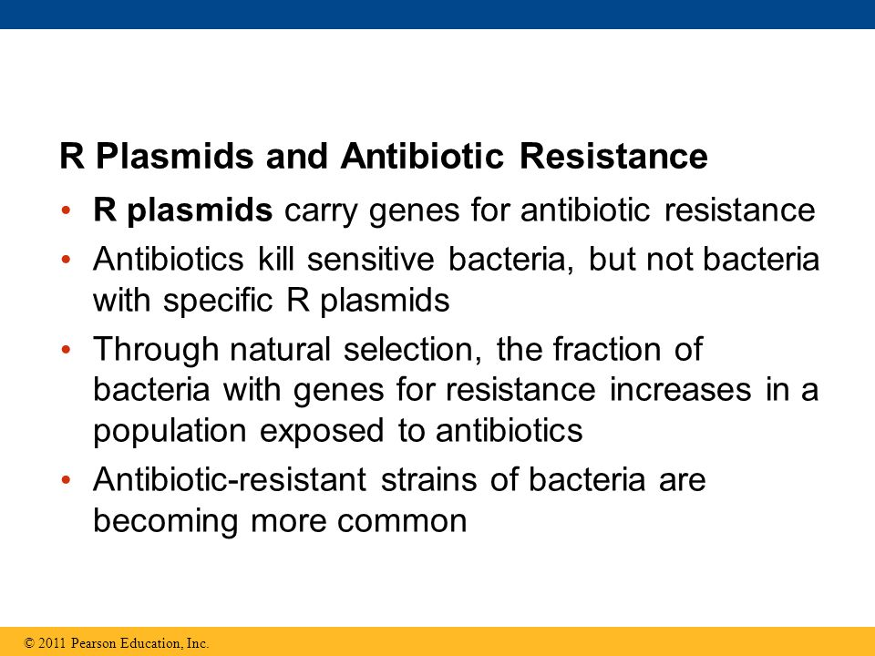 R Plasmids and Antibiotic Resistance R plasmids carry genes for antibiotic resistance Antibiotics kill sensitive bacteria, but not bacteria with speci