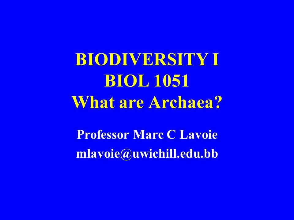 BIODIVERSITY I BIOL 1051 What are Archaea? Professor Marc C Lavoie mlavoie@uwichill.edu.bb