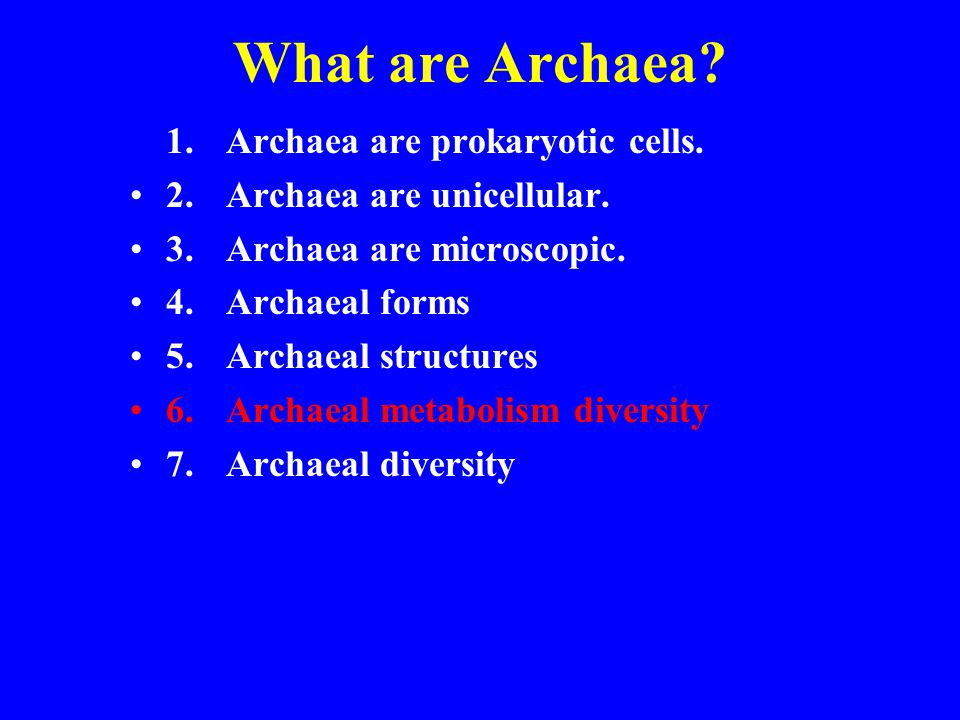 What are Archaea? 1.Archaea are prokaryotic cells. 2.Archaea are unicellular. 3.Archaea are microscopic. 4. Archaeal forms 5.Archaeal structures 6.Arc