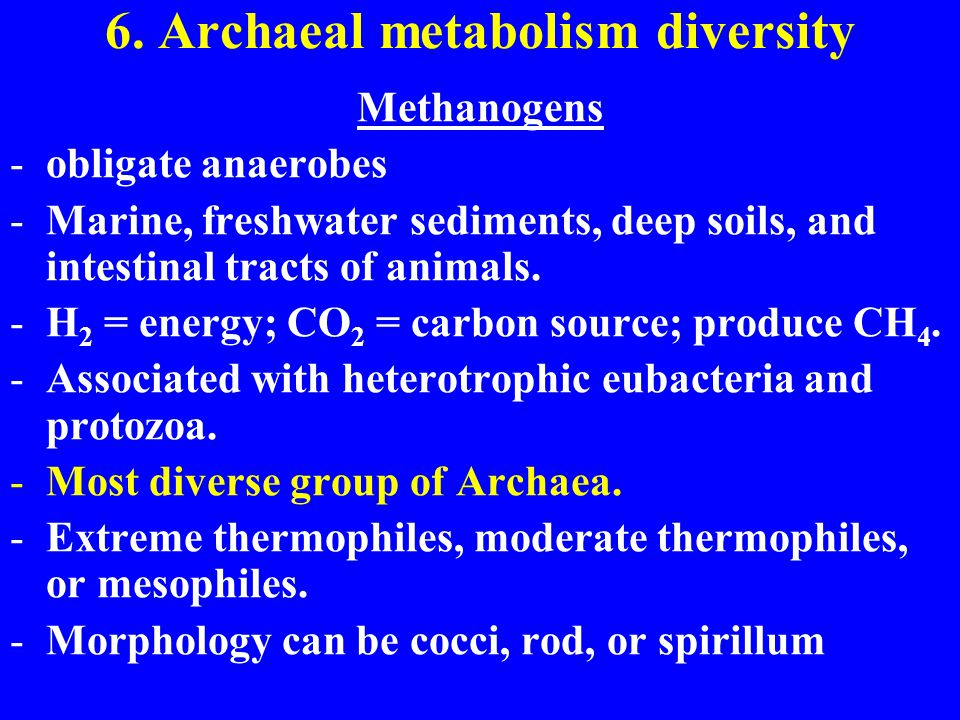 6. Archaeal metabolism diversity Methanogens -obligate anaerobes -Marine, freshwater sediments, deep soils, and intestinal tracts of animals. -H 2 = e