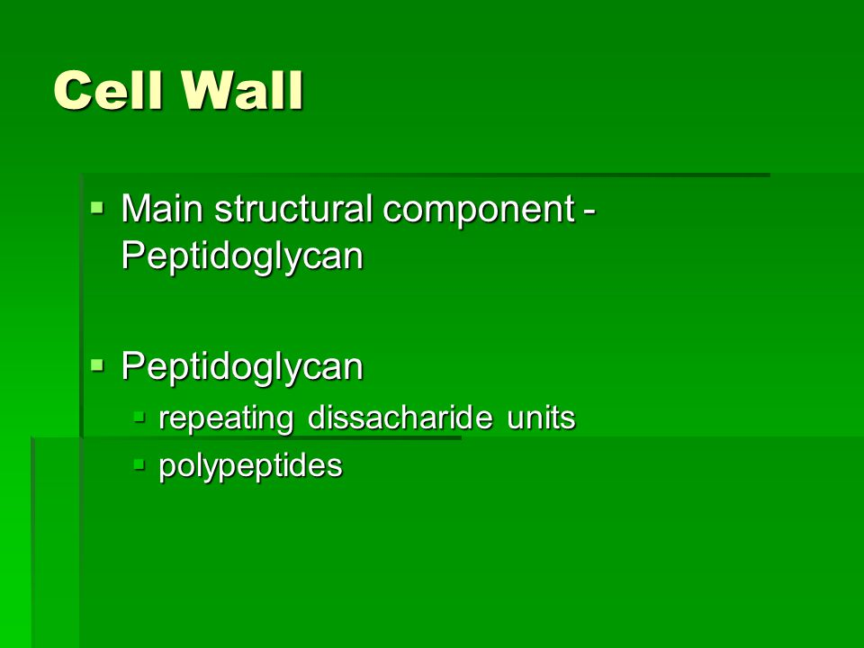 Cell Wall  Main structural component - Peptidoglycan  Peptidoglycan  repeating dissacharide units  polypeptides
