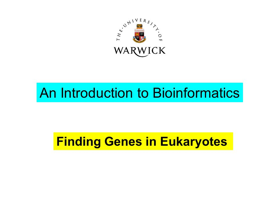 Finding Genes in Eukaryotes An Introduction to Bioinformatics