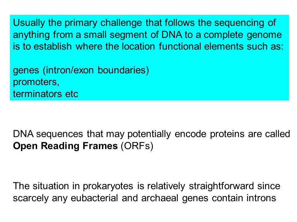 Usually the primary challenge that follows the sequencing of anything from a small segment of DNA to a complete genome is to establish where the location functional elements such as: genes (intron/exon boundaries) promoters, terminators etc DNA sequences that may potentially encode proteins are called Open Reading Frames (ORFs) The situation in prokaryotes is relatively straightforward since scarcely any eubacterial and archaeal genes contain introns