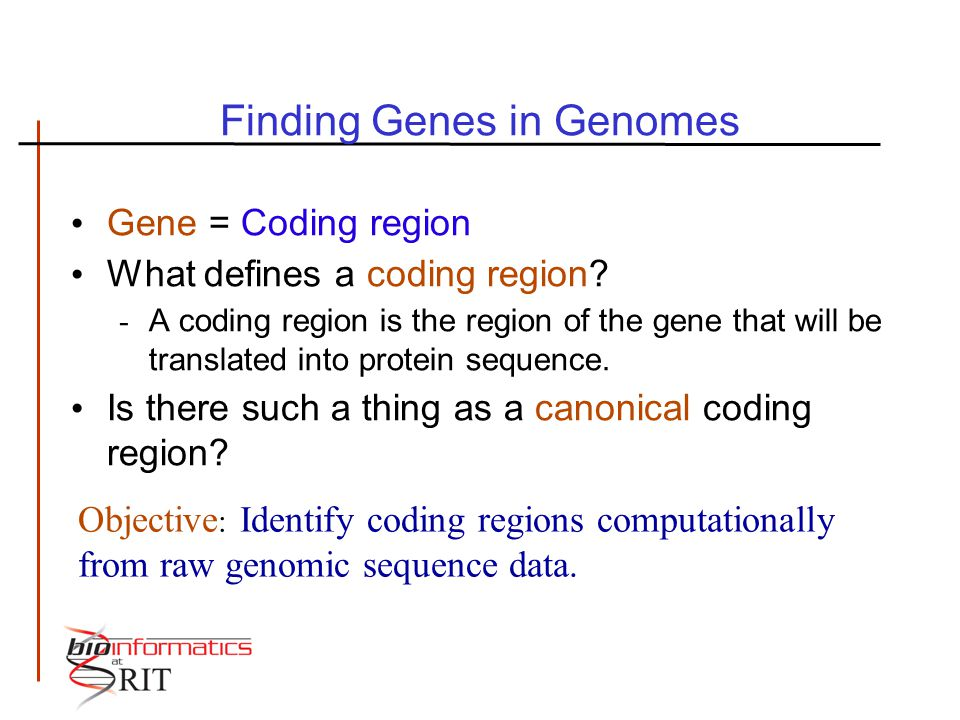 Finding Genes in Genomes Gene = Coding region What defines a coding region? - A coding region is the region of the gene that will be translated into p