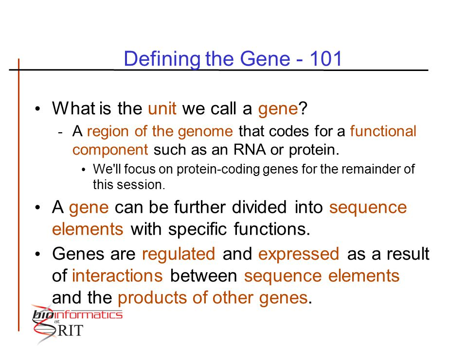 Defining the Gene - 101 What is the unit we call a gene? - A region of the genome that codes for a functional component such as an RNA or protein. We'