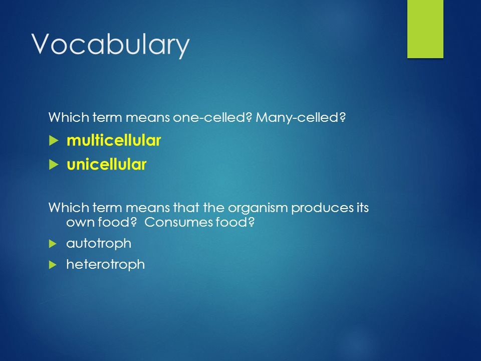 Vocabulary Which term means one-celled. Many-celled.