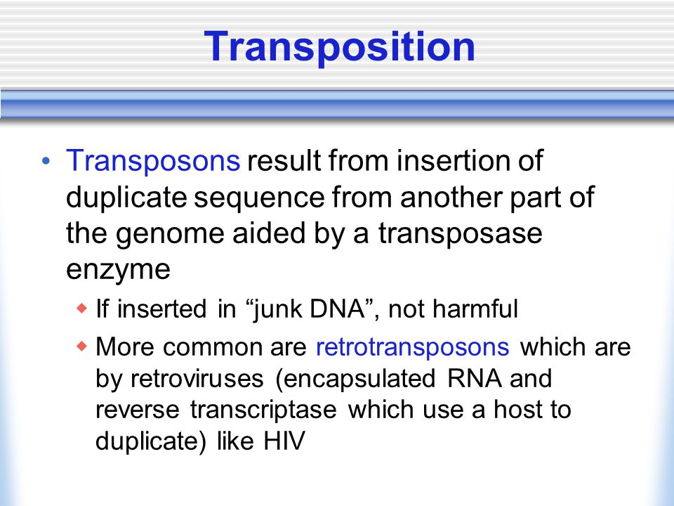 """Transposition Transposons result from insertion of duplicate sequence from another part of the genome aided by a transposase enzyme  If inserted in """""""