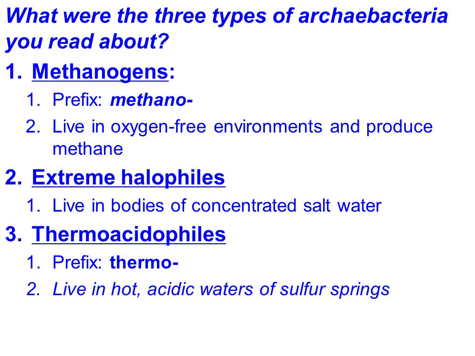 What were the three types of archaebacteria you read about.
