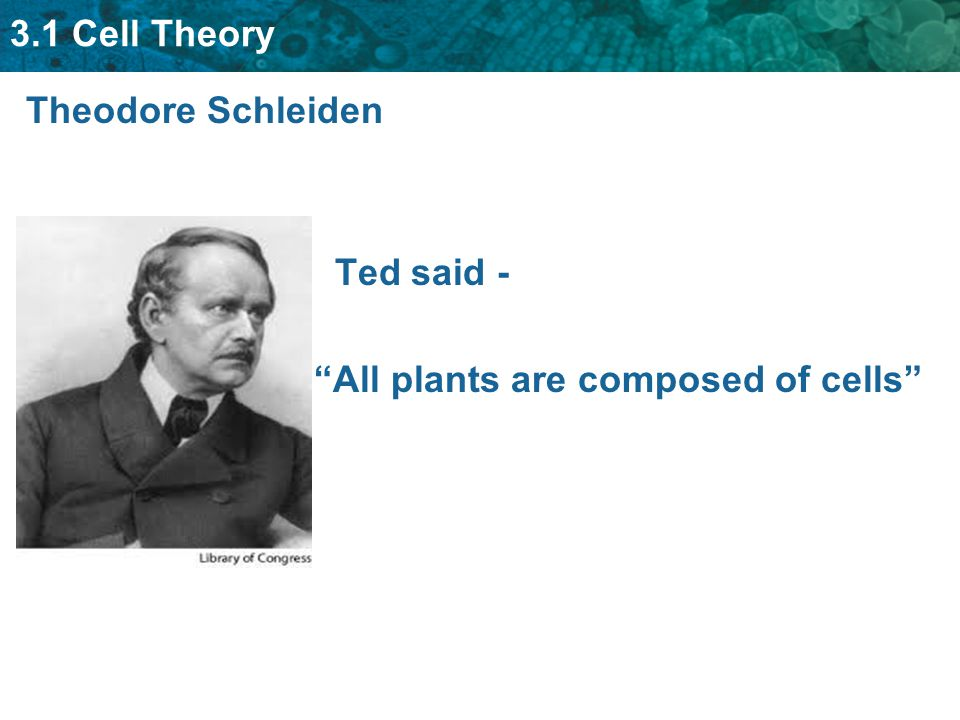 3.1 Cell Theory Theodore Schleiden Ted said - All plants are composed of cells