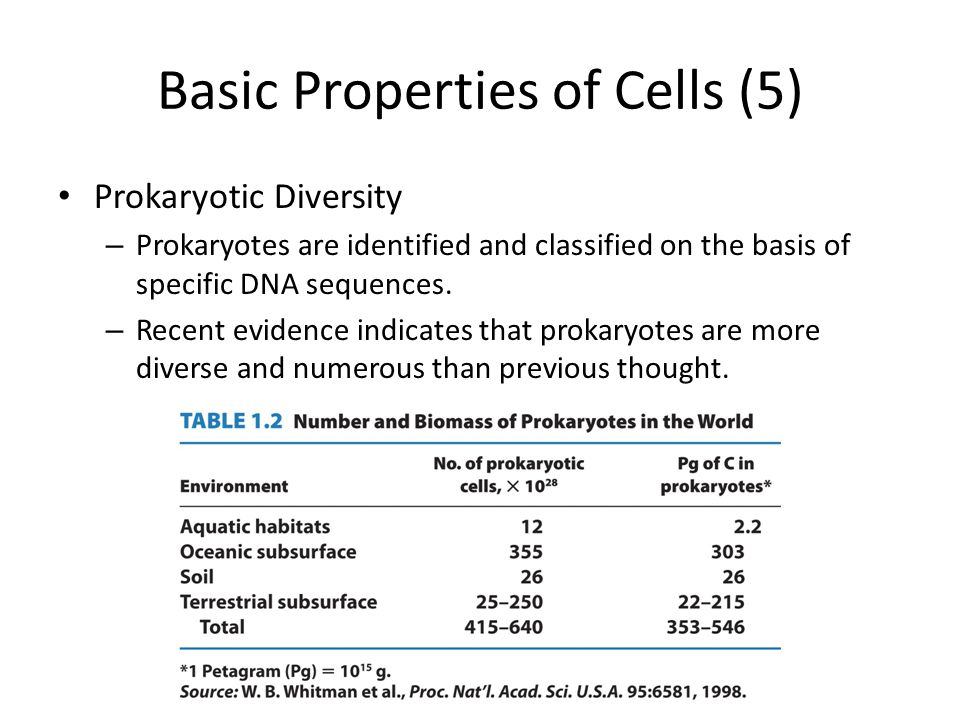 Basic Properties of Cells (5) Prokaryotic Diversity – Prokaryotes are identified and classified on the basis of specific DNA sequences. – Recent evide