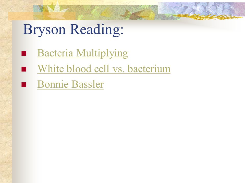 Bryson Reading: Bacteria Multiplying White blood cell vs. bacterium Bonnie Bassler
