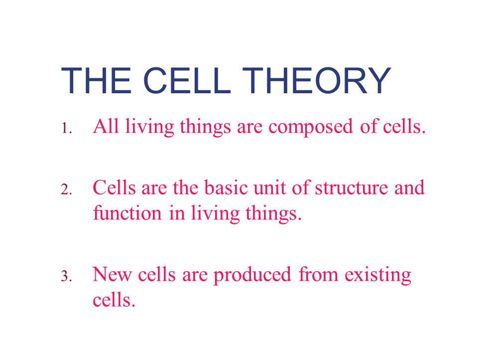 THE CELL THEORY 1. All living things are composed of cells. 2. Cells are the basic unit of structure and function in living things. 3. New cells are p