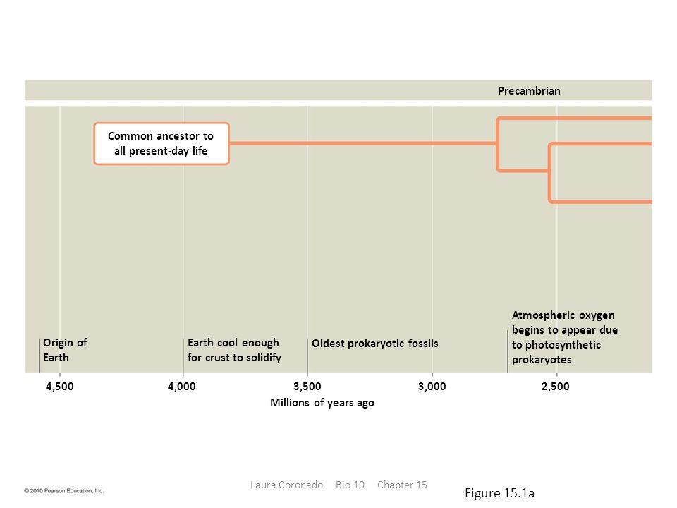 The Ecological Impact of Prokaryotes – Pathogenic bacteria are in the minority among prokaryotes.