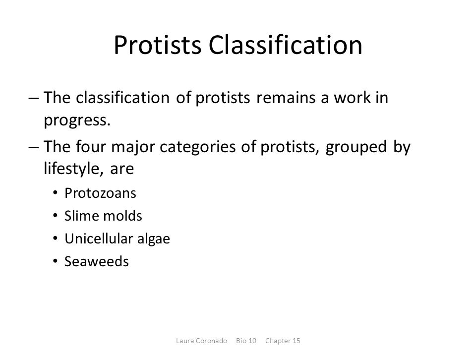 Protists Classification – The classification of protists remains a work in progress.