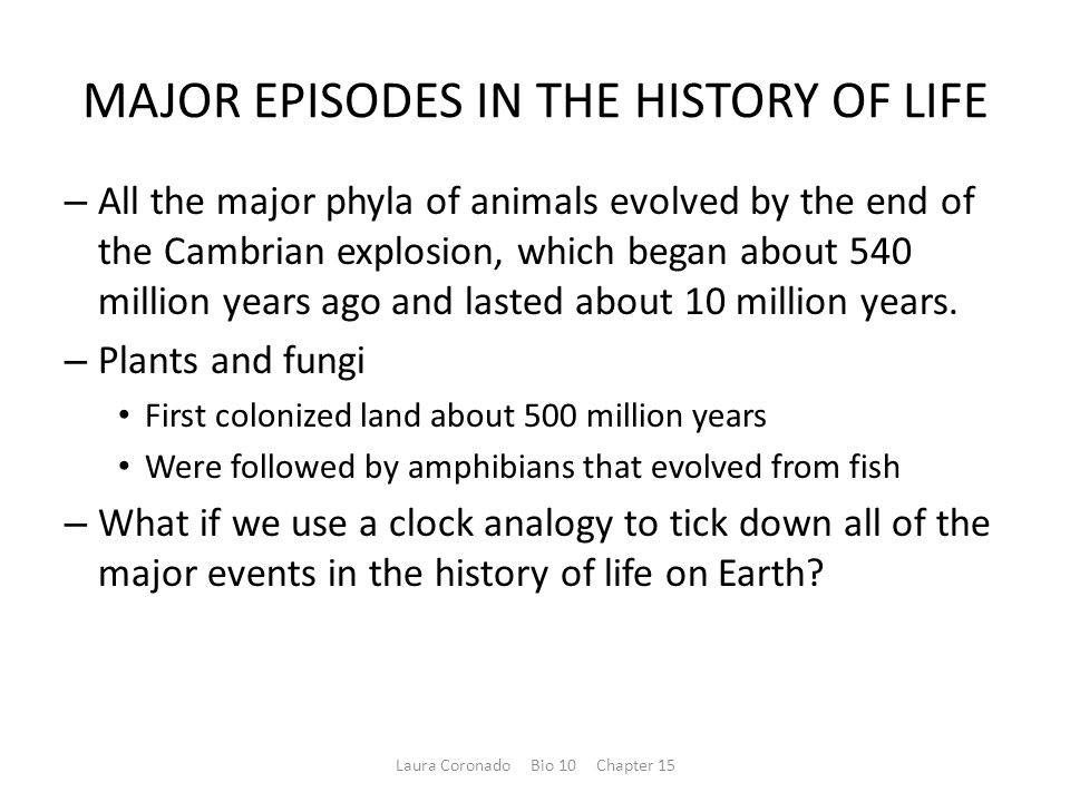 MAJOR EPISODES IN THE HISTORY OF LIFE – All the major phyla of animals evolved by the end of the Cambrian explosion, which began about 540 million years ago and lasted about 10 million years.