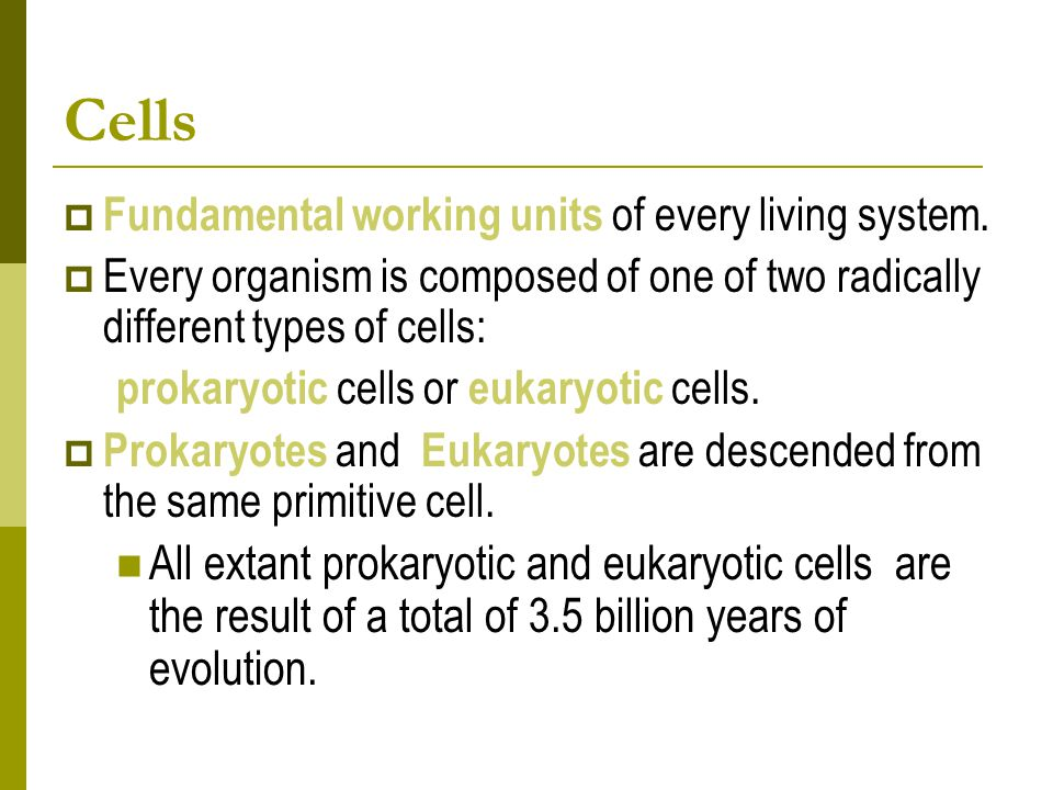 Cells  Fundamental working units of every living system.