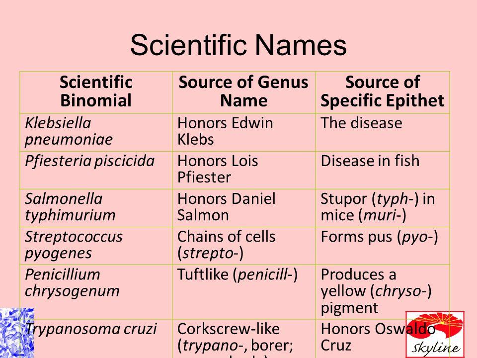 Scientific Nomenclature Binomial genus and specific epithet (species).